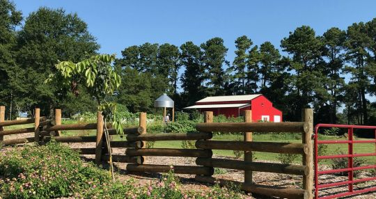 Spartanburg Community College opens Center for Sustainable Agriculture